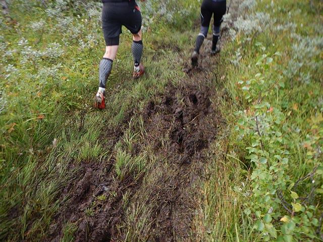 Mot Ottsjö, AXA Fjällmaraton