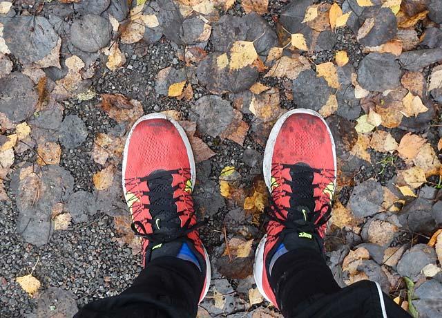 Nike Lunaracer+ 3 och löv