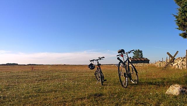 Cykelutflykter