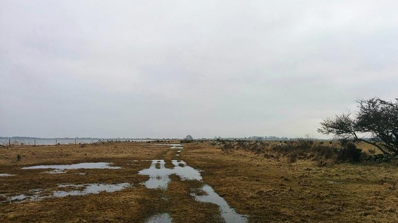 Blötmark, Gotland