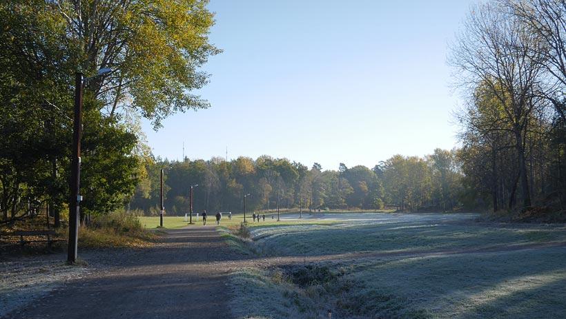 Morgon i Björkhagen