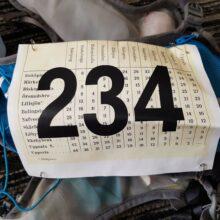 Aros Marathon 50 km 2019